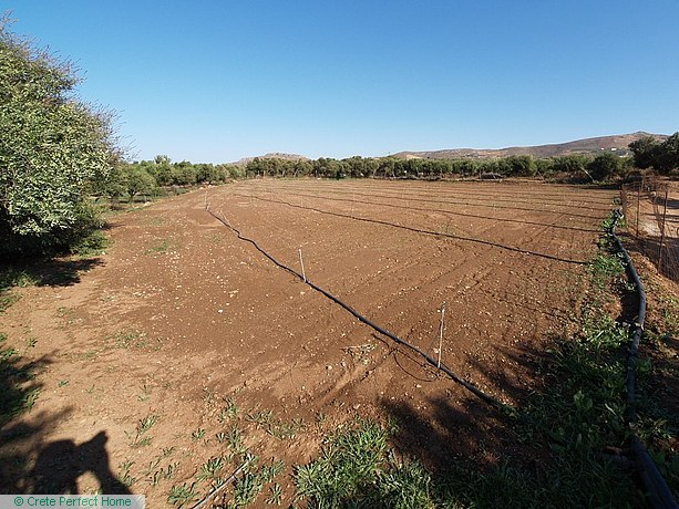 Large level plot with sea views