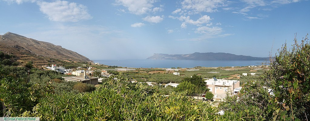 Terraced olive grove near village, sea & mountain views
