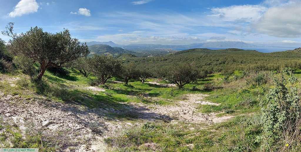 Large plot with olive trees, beautiful sea & mountain views