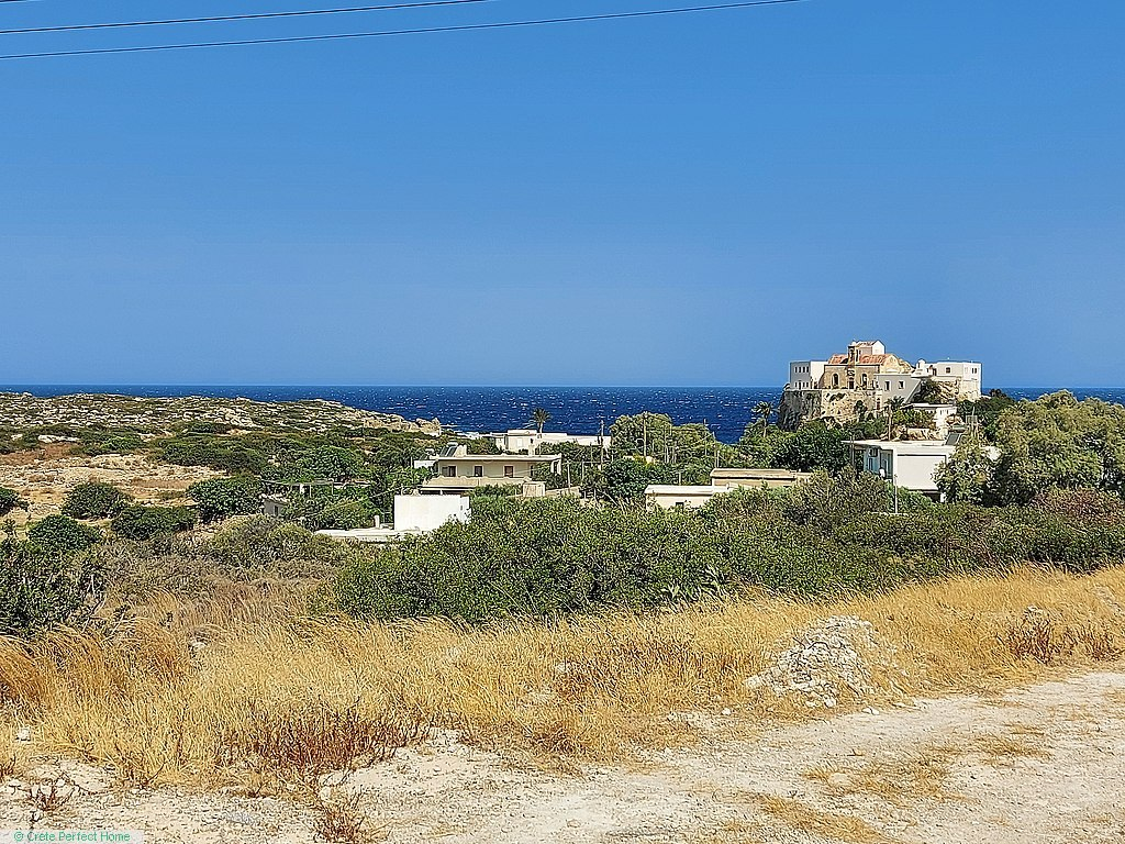 Olive grove 700m from beach, sea view, ideal for tourism