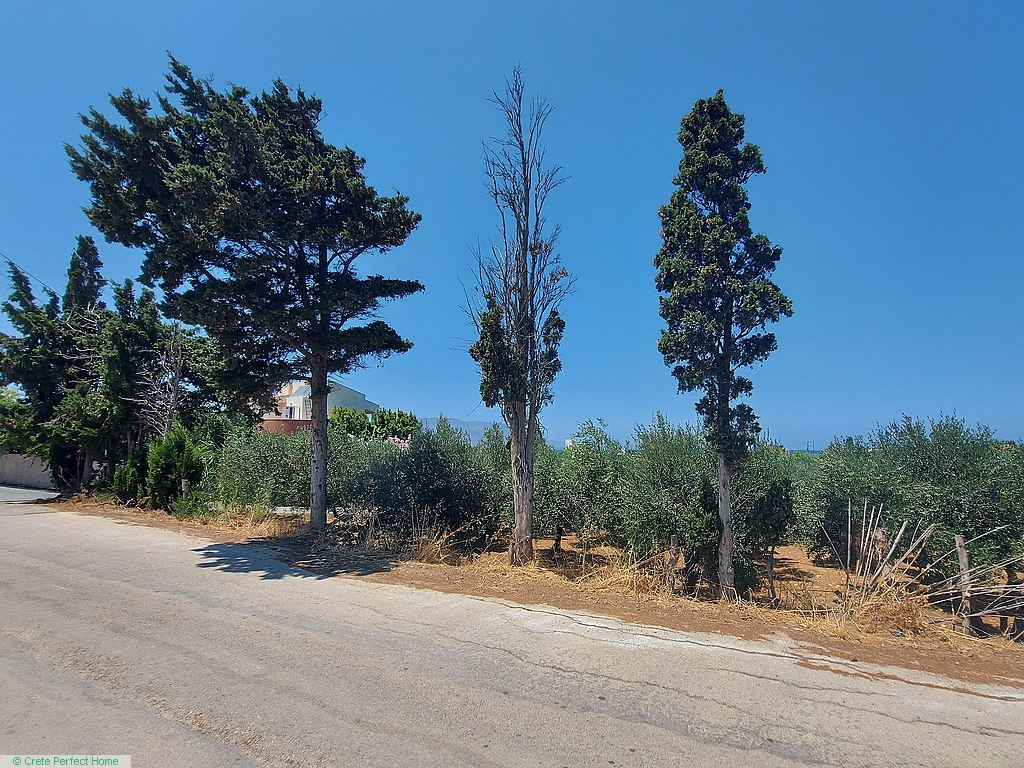 Huge level corner plot near beach, ideal for commercial use, sea view